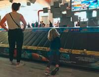 Gepäckbänder am Flughafen: Kein Spielplatz für Kinder
