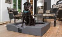 Warum ist ein orthopädischer Hundekorb oder ein Hundebett mit Kunstleder sinnvoll?