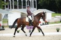 NÜRNBERGER BURG-POKAL im Doppelpack beim Sommerturnier bei Horse & Classic in Schenefeld