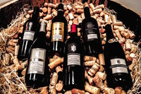 Billigerweinkaufen.de bietet hochwertige Weine aus aller Welt zu günstigen Preisen.