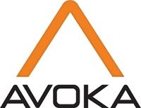 Zweites Rekordjahr in Folge für Fintech Avoka mit 79% Auftragsplus