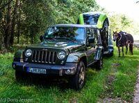 Pferdeanhänger-Zugfahrzeug Jeep Wrangler auf Mit-Pferden-reisen.de