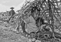 Endspurt bei der Abstimmung zum SOS-Fotowettbewerb 2017 / wertvolle Preise zu gewinnen