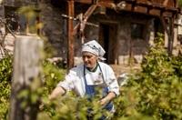 Knoblauch, Chili & Co. - würzige Wunderwaffe für die Übergangszeit