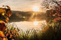 #fromstegersbachwithlove - Vier herzlich herbstliche Tipps der Golf- & Thermenregion Stegersbach