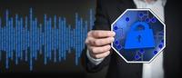 Hackern auf der Spur: Blue Frost Security zeigt häufigste Schwachstellen in Firmennetzwerken