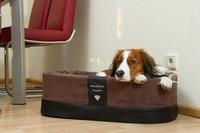 Exklusive Hundekörbe Marke DoggyBed