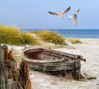 Ferienhaus Insel Rügen Ferienwohnung Insel Rügen, Reethaus Deichgraf direkt auf dem Deich,Strandhaus Bernstein Sauna Whirlpool Kamin