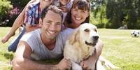WelcherName Portrait: Hunderasse Golden Retriever
