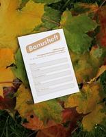 Sammeltipp für den Herbst