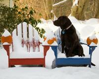 Machen Sie Ihre Gartenmöbel jetzt winterfest