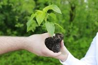 CO2-Rekordanstieg: EGRR fordert sofortige weltweit konzertierte Klima- und Umweltaktion