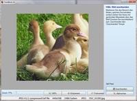 Aktuelle Neuigkeiten zu Bildbearbeitung mit einem Bildbearbeitungsprogramm