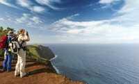 Madeira: Winterflucht auf die Frühlingsinsel