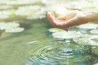 Gewässerschutz ist Gesundheitsvorsorge