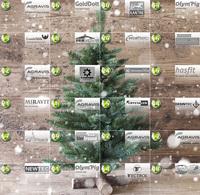 Online-Adventskalender der AGRAVIS Raiffeisen AG mit tollen Preisen