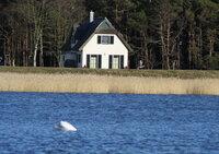 Ferienhaus Insel Rügen Reethaus Deichgraf erste Reihe mit herrlichem Wasserblick ruhige Lage zum Ostseebadestrand ist es nur ein Katzensprung Wlan