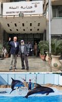 showimage Keine neuen Delfinarien und Delfinauswilderungen in Ägypten - WDSF und ProWal sprechen mit Umweltministerium