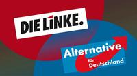 Falk Rodig - Fraktionen von AfD und Linken stimmen in Berlin gemeinsam ab