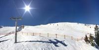 Schneefanggitter - ein wichtiger Lebensretter