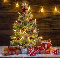 Weihnachten: Verschenken Sie Gesundheit für Ihre Liebsten!