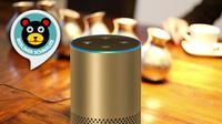 Amazons Alexa spricht jetzt auch Berlinerisch: 100 Original-Sprüche & Redewendungen aus Berlin