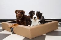 Die Weiterentwicklung der orthopädischen Hundebetten.