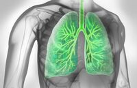 Empfehlung für schlecht eingestellte Asthmatiker