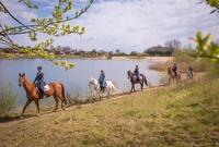 Pferdeland & Urlaubsland: Deutschland!