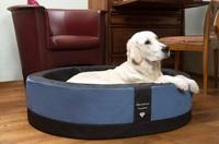 Der Hundekorb Paddy Style - dekorativ und XXL-bequem