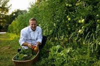 Mit nachhaltiger Gourmetküche zur Leichtigkeit im Terme di Saturnia Spa & Golf Resort