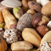 Global Nut Ingredients Market Status and Prospect, Forecast 2018 to 2026
