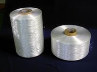 Kapazitätsausbau für Leona™ Nylon 66 Filamente