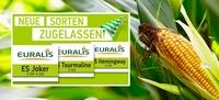 Sortenzulassung 2018 mit Sensationsergebnis für EURALIS und Doppelneun