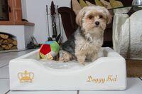 Kleine orthopädische Hundekörbchen und Hundebettchen