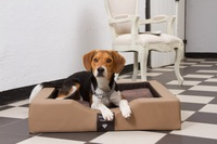 Was ist das Besondere an GEL-Hundebetten?