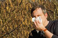 Forschungsprojekt macht Allergikern Hoffnung
