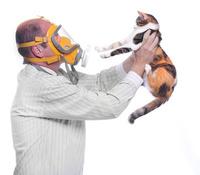 Allerpet: die Lösung bei Tierallergie