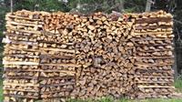 Brennholz: Leicht zunehmende Nachfrage bei konstanten Preisen