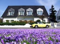 Welche Vorteile hat ein Immobilienverkauf im Frühling?