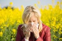 Heuschnupfen - So haben Sie die Allergie im Griff!