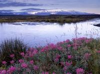 Besondere Naturerlebnisse - Die schönsten Nationalparks in Europa