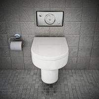 Das Spülrandlose WC - die sauberere Toilette für Ihr Bad