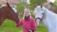 showimage Die Seele der Pferde: Harmonie herstellen und Kraft geben