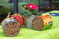 Insektenschutzlotterie, Bienenhotel & E-Autos