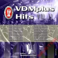 Verkaufserfolge im Musikgeschäft mit dem VDMplus