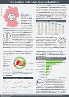 Infografik der AGRAVIS Raiffeisen AG zum Thema Erdbeeren