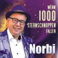 Wenn tausend Sternschnuppen fallen - das neue Lied von Norbi