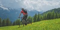 Homöopathie nach Schweizer Vorbild?