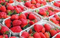 So halten Erdbeeren länger frisch